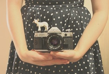 Cameras / by Hello Yesterday