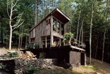 CABIN IN THE WOODS / 5 year plan.