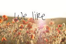 We like... / Dinge, die uns gefallen, die wir mit anderen teilen.