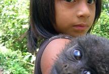 Matsigenka / xapiri.com curated board in reference to the Matsigenka indigenous people of Peru.