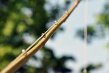 DIY fishing ideas