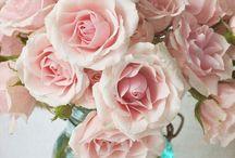 pink virágok