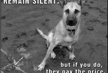 Stop Animal Cruelty / by CasaBella Interiors