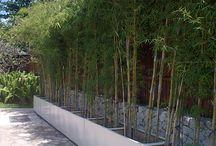 IJLA / Equatorial Design - Holiday Inn, Baruna, Bali / Landscape Architecture