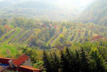 Experiences / Nice Piedmont experiences on Langhe and Monferrato hills.