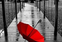 Red Is My Favorite Color :)  / by Elizabeth Meyer