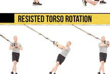 TRX / TRX exercises for full body
