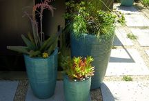 Container Design - Howlers / Planting combinations that just don't work. / by Grace Hensley @ eTilth