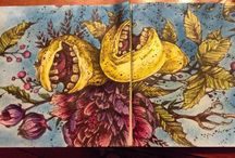 Coloring: Karolina Kubikowska