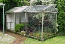 Aviary Ideas Outdoor