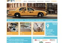 Foothills Animal Shelter / Our solution for foothills animal shelter. Included: strategy, development, CMS, wireframing, custom support, responsive, ecommerce, agency