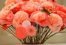 My Flower Obsession