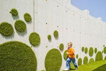 Contemporary landscape /vertical garden / green walls /