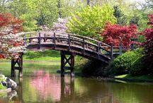 Mrb.Formación.Jardines Japoneses / Me encantan los jardines japones me transmiten paz, tranquilidad y serenidad