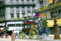 Chevaux et attelages  à Paris