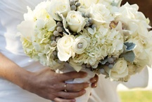 ideas for Gold/Creme wedding  / by Sophisticated Floral Designs