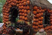 Autumn & Nature