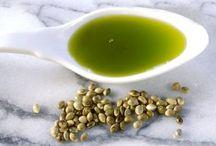 Bylinky / bylinkaření, zdravá výživa