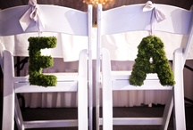 Wedding Ideas / by Erin M C