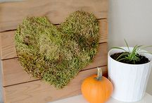 Harvest Time DIY / We're so blessed!! Here's our best craft and DIY home decor ideas for the Thanksgiving season.