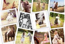 Moodboarden paarden fotografie