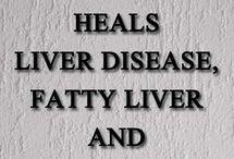 Health - Fatty Liver
