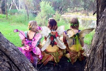 Nature Fairies / Nature Fairies from Ladybird Enertainment, love to share the magic and beauty of nature. We like natural products, flowers gardens, making things out of recycled and found objects and closing our eyes and listening to the birds.