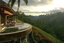 I want to live here! / by Trisha Holub