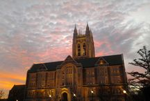 #Gassongrams / Beautiful views of our beloved building  - Gasson Hall / by NPA