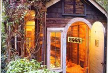 CHICKEN COOPS / by Picture This Photography