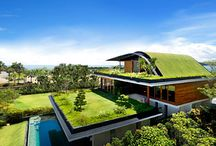 Eco Tropical House