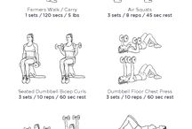 Work Out Labs workout