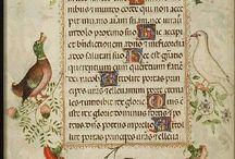 Manuscripts, Bücher, Bilder