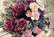 Flowers - Květiny