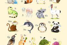 design - animal illustrations