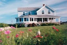 Block Island Locals / by Block Island Tourism