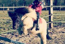 Equitation adaptée - Haras de Lukos