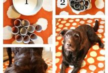 Homemade stuff for dogs