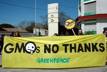 Hell No to GMO / by Zoe