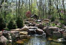 Ponds ... / Piccoli paragisi in giardino ...