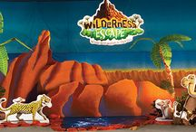 Decorating | Wilderness Escape VBS 2014 / Decorating ideas for your Wilderness Escape VBS 2014! / by Group VBS