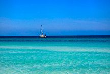 We Live Where You Vacation / All the great things in and around Cortez and Anna Maria Island Florida / by Swordfish Grill and Tiki Bar