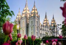 #mormonocity