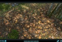 Environment / Ground
