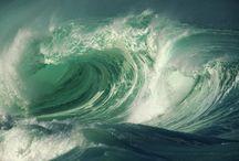 Il linguaggio del mare