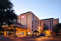 Hotels Near Tampa Airport