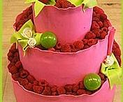 Cakes for S&E ;)