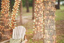 Garden Ideas & DIY