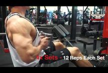 Fitness Videos / Ever wondered how to perform an exercise properly?  Look no further.