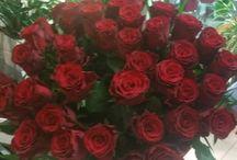 Λουλούδια Αγάπης